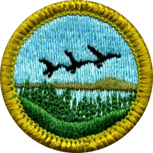 Merit Badges 3 - Boy Scout Troop 721 - Milford, CT